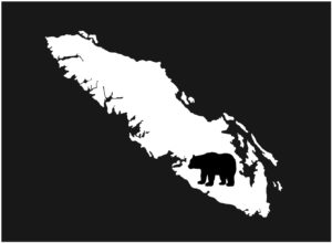 Vancouver Island Bear decal WHITE 7.5″ ***FREE SHIPPING***